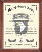 101st Airborne Division Image (A/AA)
